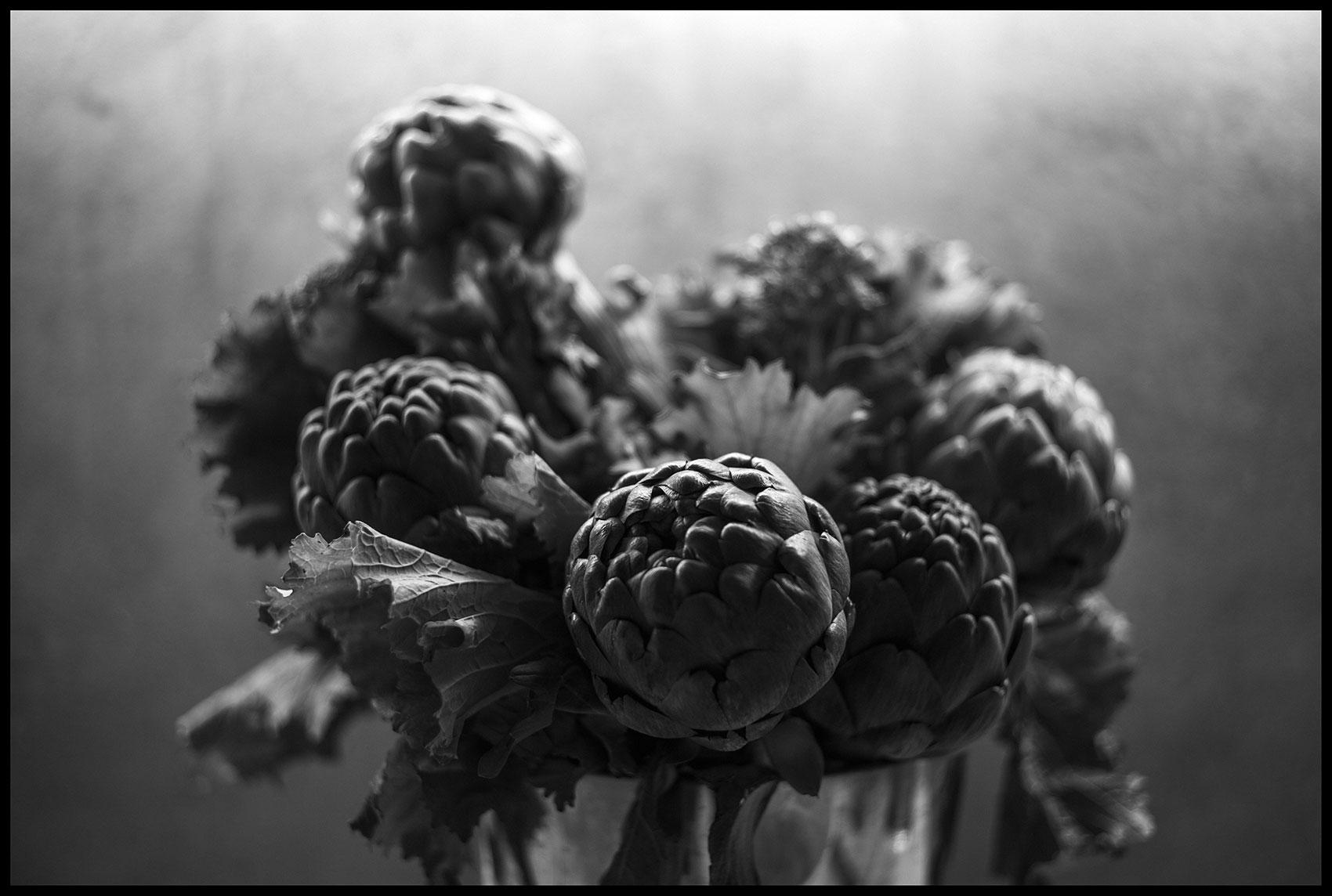 Natura Morta | Album QUARANTINE | Stefano Paradiso - Photographer